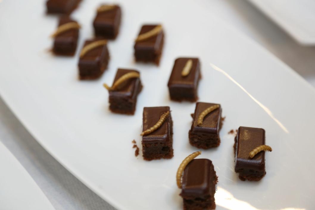 FRISTENDE: Det meste smaker godt sammen med sjokolade. Melbillelarver er intet unntak. Foto: Coxit.