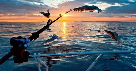 AKTIVITETER: NHO Reiseliv mener gode aktiviteter fører til rekordtall for overnattingsbransjen. Foto: Kongshus Jakt-og Fiskecamp/HANEN.