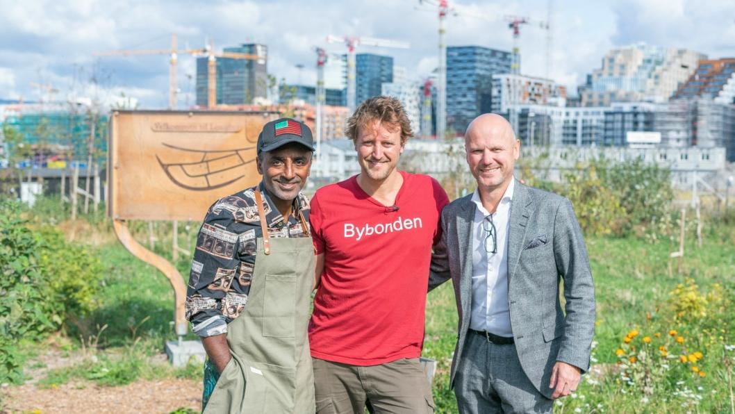 I ÅKEREN: Marcus Samuelsson (t.v.), Andreas Capjon (Bybonden) og Administrerende direktør på Clarion Hotel The Hub, André Schreiner i åkeren på Losæter Gård.