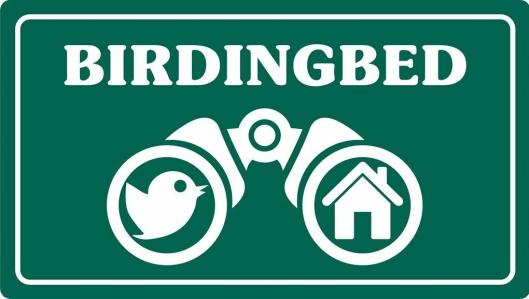 GUIDE: Birdingbed.no er en ny fuglekikkerguide, av og for fuglekikkere.